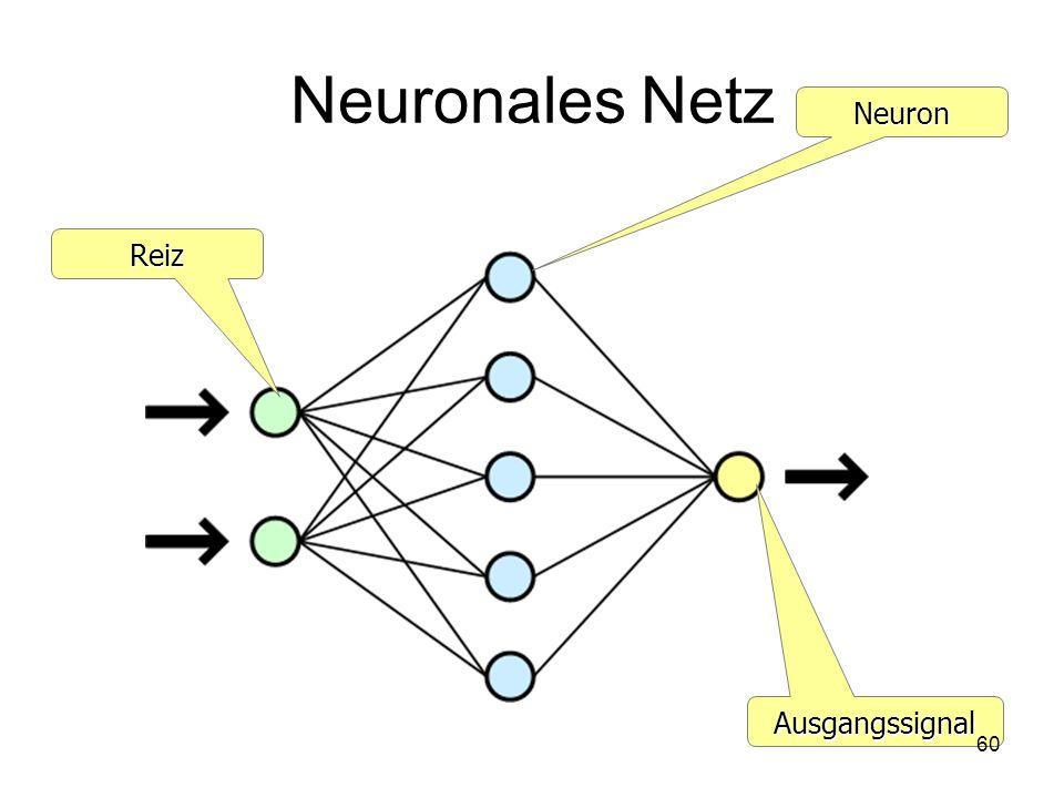Neuronales Netz Reiz Neuron Ausgangssignal 60