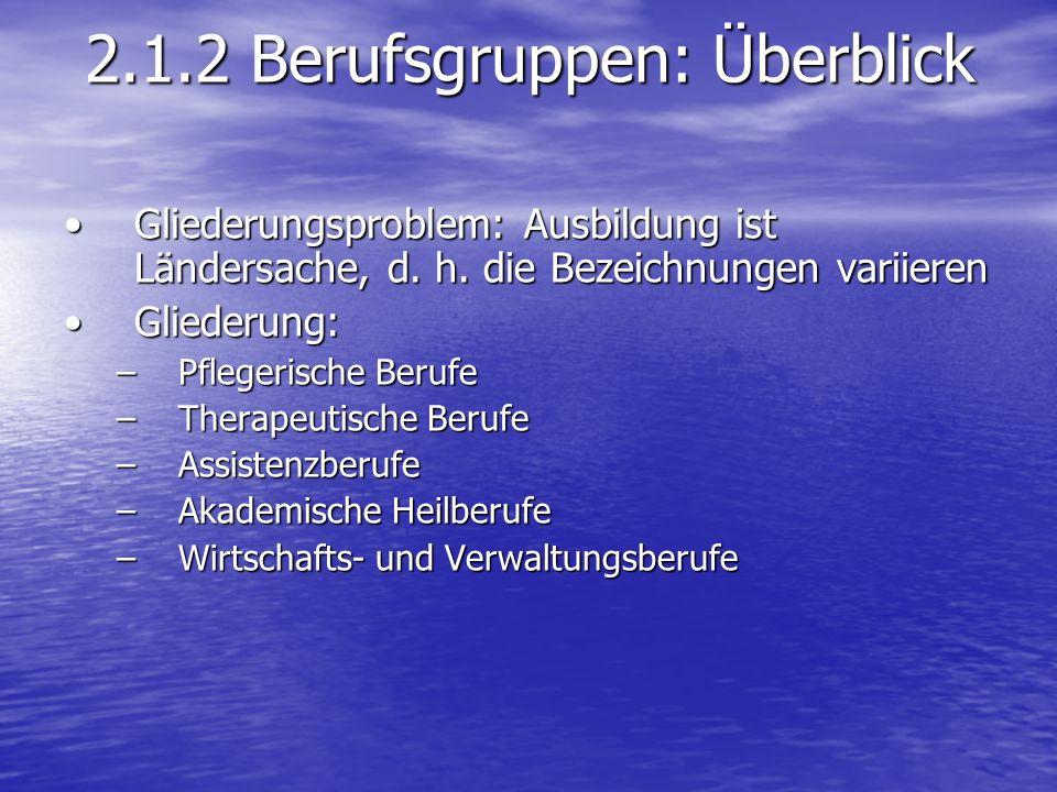 2.1.2 Berufsgruppen: Überblick Gliederungsproblem: Ausbildung ist Ländersache, d.