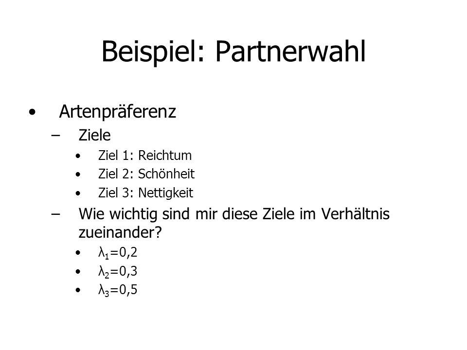 Beispiel: Partnerwahl Artenpräferenz –Ziele Ziel 1: Reichtum Ziel 2: Schönheit Ziel 3: Nettigkeit –Wie wichtig sind mir diese Ziele im Verhältnis zueinander.