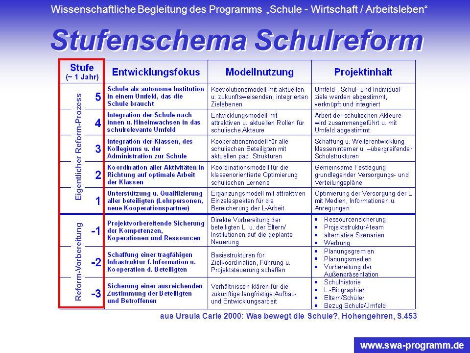 Wissenschaftliche Begleitung des Programms Schule - Wirtschaft / Arbeitsleben www.swa-programm.de Förderung Benachteiligter Schlussfolgerung: Die Förd