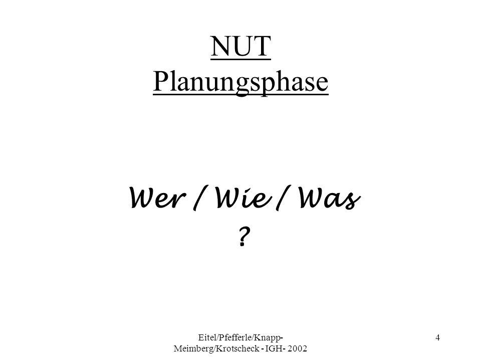 Eitel/Pfefferle/Knapp- Meimberg/Krotscheck - IGH- 2002 4 NUT Planungsphase Wer / Wie / Was ?