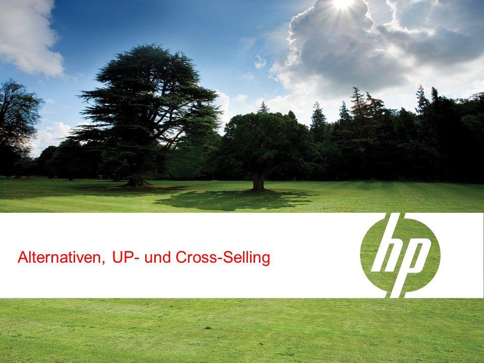 Alternativen, UP- und Cross-Selling