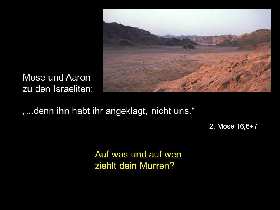 Mose und Aaron zu den Israeliten:...denn ihn habt ihr angeklagt, nicht uns. 2. Mose 16,6+7 Auf was und auf wen ziehlt dein Murren?