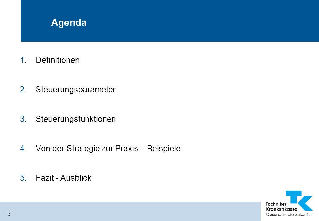2 Agenda 1.Definitionen 2.Steuerungsparameter 3.Steuerungsfunktionen 4.Von der Strategie zur Praxis – Beispiele 5.Fazit - Ausblick