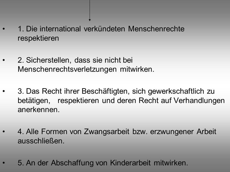 1. Die international verkündeten Menschenrechte respektieren 2. Sicherstellen, dass sie nicht bei Menschenrechtsverletzungen mitwirken. 3. Das Recht i