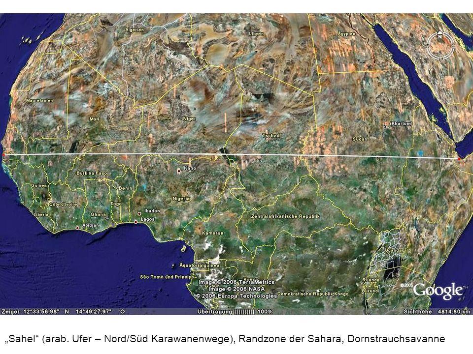 Sahel (arab. Ufer – Nord/Süd Karawanenwege), Randzone der Sahara, Dornstrauchsavanne
