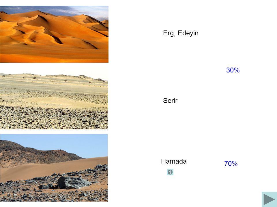 Algerien, Großer Östlicher Erg, 600 km