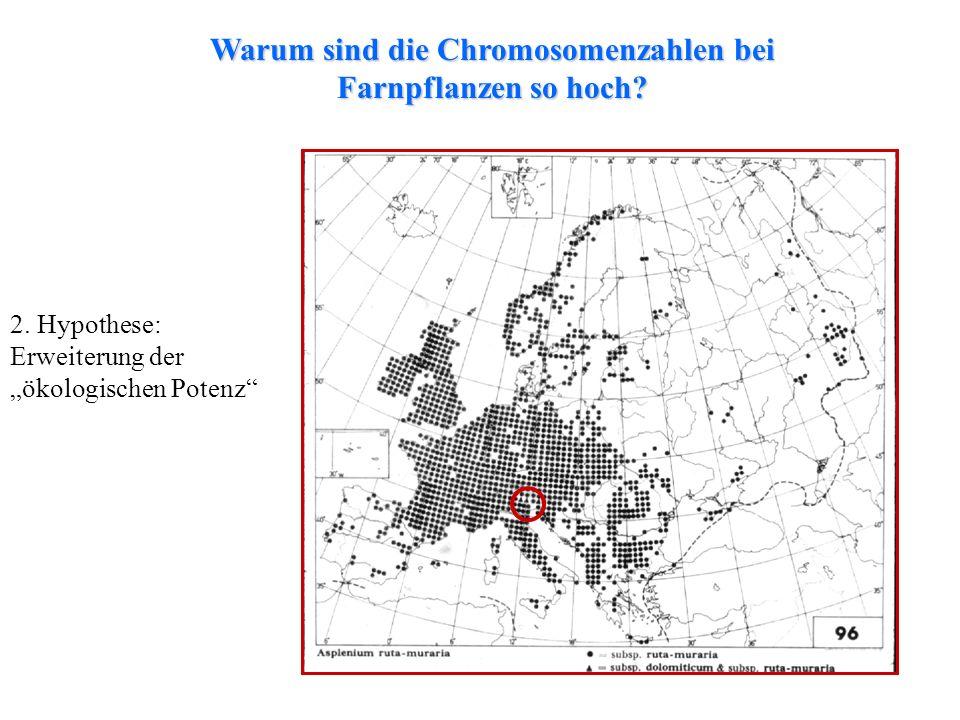 folioses Lebermoos 2. Hypothese: Erweiterung der ökologischen Potenz Warum sind die Chromosomenzahlen bei Farnpflanzen so hoch?