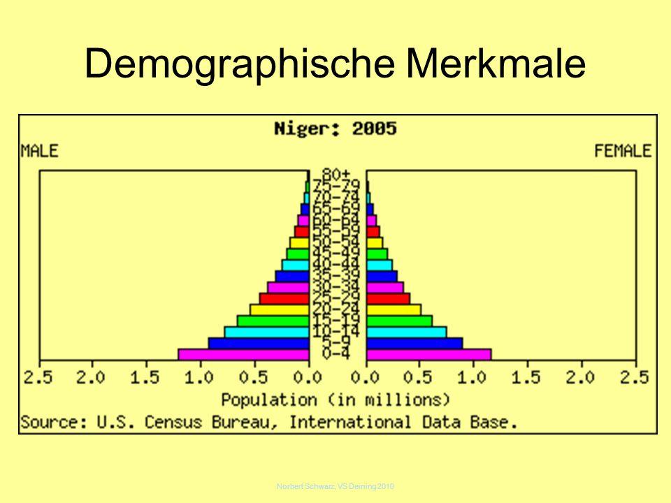Norbert Schwarz, VS Deining 2010 Demographische Merkmale