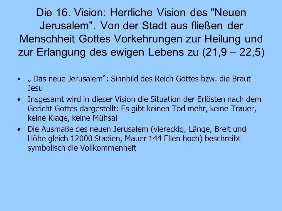 Die 16. Vision: Herrliche Vision des