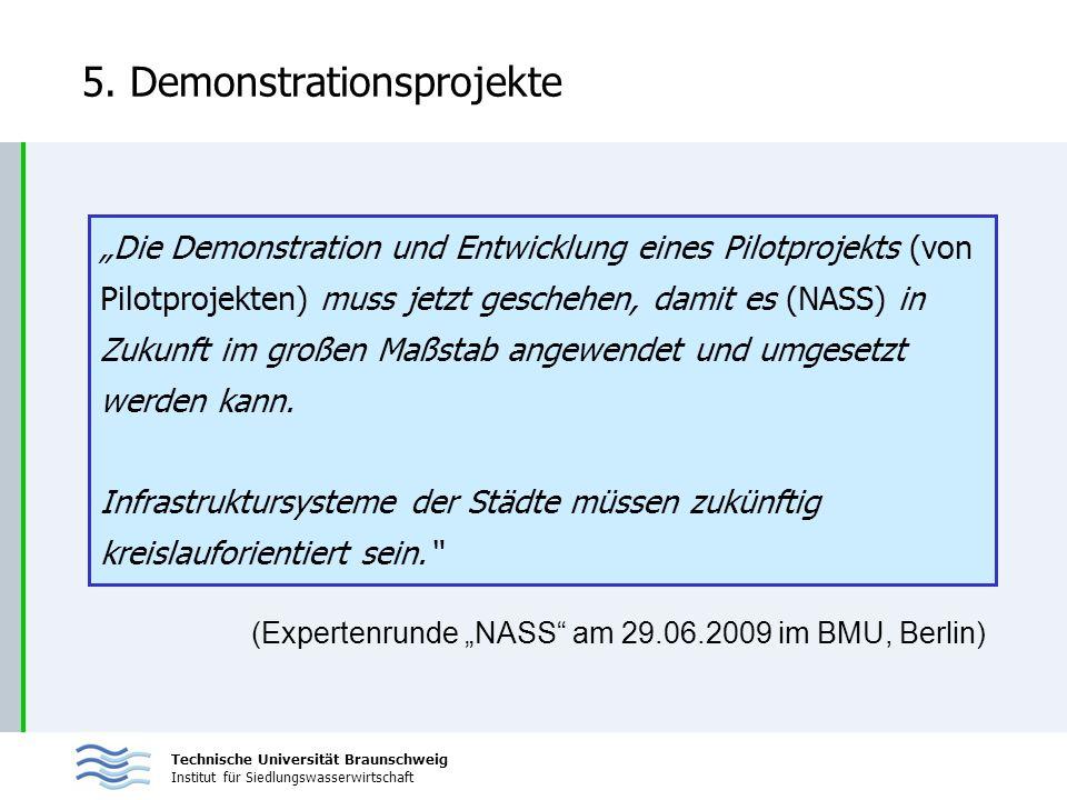 Technische Universität Braunschweig Institut für Siedlungswasserwirtschaft 5. Demonstrationsprojekte Die Demonstration und Entwicklung eines Pilotproj