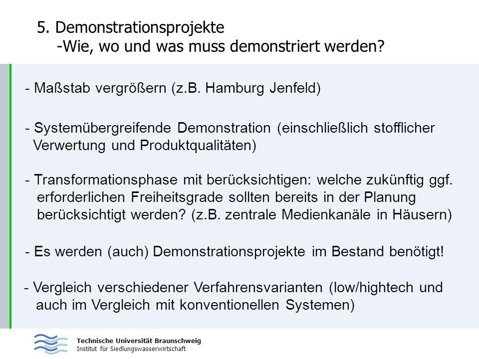 Technische Universität Braunschweig Institut für Siedlungswasserwirtschaft 5. Demonstrationsprojekte -Wie, wo und was muss demonstriert werden? - Maßs