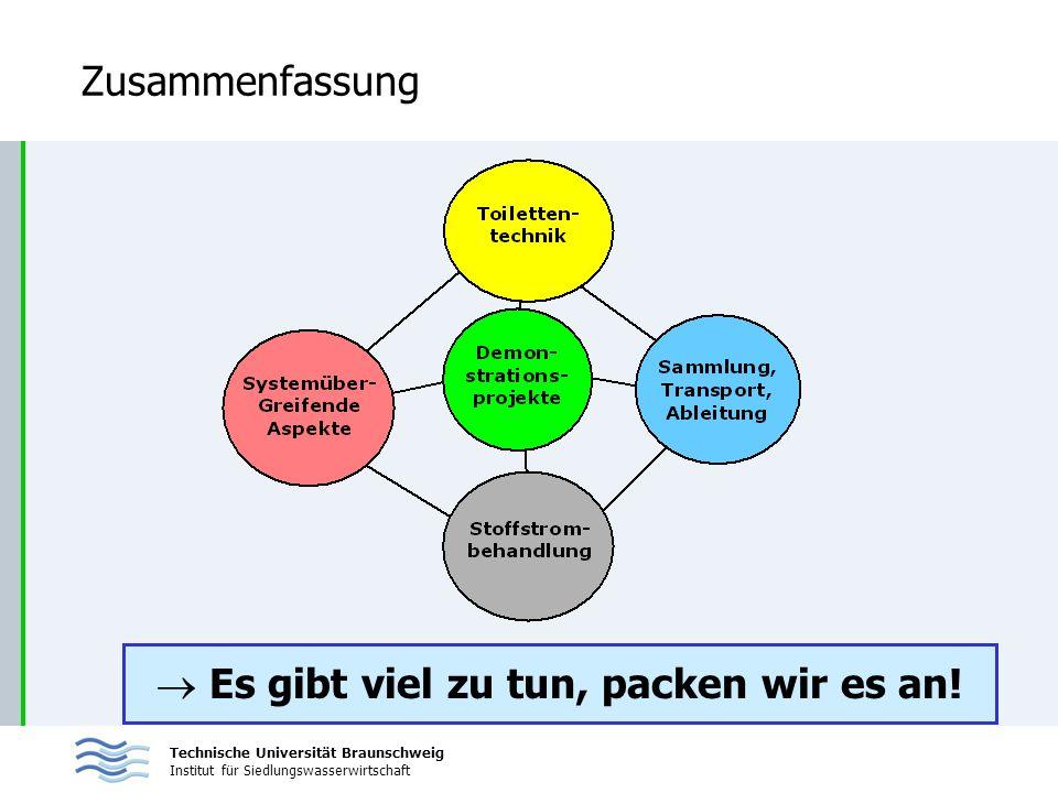Technische Universität Braunschweig Institut für Siedlungswasserwirtschaft Zusammenfassung Es gibt viel zu tun, packen wir es an!
