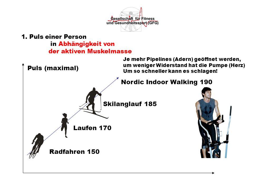 1. Puls einer Person in Abhängigkeit von der aktiven Muskelmasse Puls (maximal) Radfahren 150 Laufen 170 Skilanglauf 185 Nordic Indoor Walking 190 Je