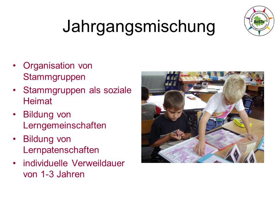 Jahrgangsmischung Organisation von Stammgruppen Stammgruppen als soziale Heimat Bildung von Lerngemeinschaften Bildung von Lernpatenschaften individuelle Verweildauer von 1-3 Jahren