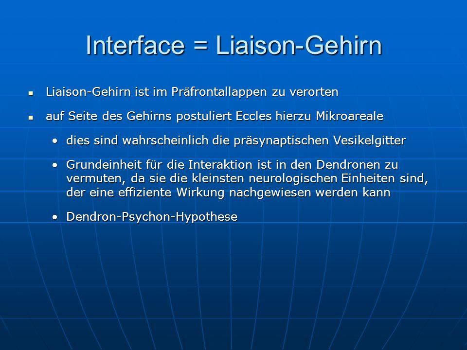 Interface = Liaison-Gehirn Liaison-Gehirn ist im Präfrontallappen zu verorten Liaison-Gehirn ist im Präfrontallappen zu verorten auf Seite des Gehirns