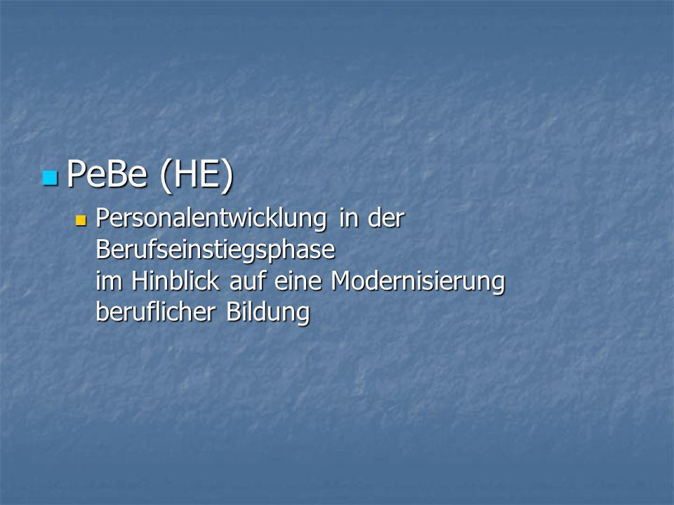 PeBe (HE) PeBe (HE) Personalentwicklung in der Berufseinstiegsphase im Hinblick auf eine Modernisierung beruflicher Bildung Personalentwicklung in der Berufseinstiegsphase im Hinblick auf eine Modernisierung beruflicher Bildung