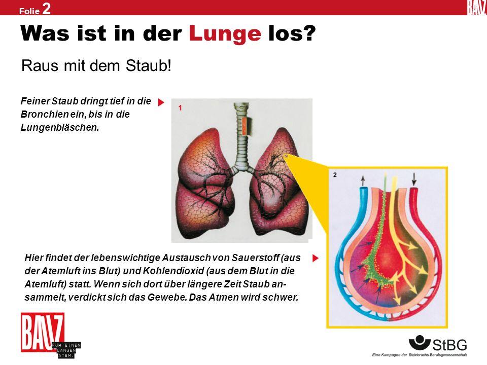 Folie 1 Schleichender Lungentod Silikose ist unheilbar Hätten Sie das gedacht? Wenn feiner Quarzstaub in der Lunge landet, bleiben Teile von ihm dort