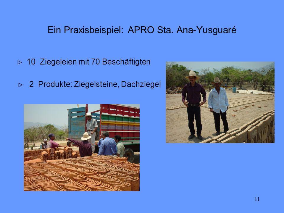 11 Ein Praxisbeispiel: APRO Sta. Ana-Yusguaré 10 Ziegeleien mit 70 Beschäftigten 2 Produkte: Ziegelsteine, Dachziegel