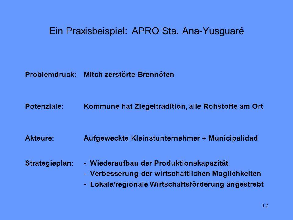 12 Ein Praxisbeispiel: APRO Sta. Ana-Yusguaré Strategieplan:- Wiederaufbau der Produktionskapazität - Verbesserung der wirtschaftlichen Möglichkeiten