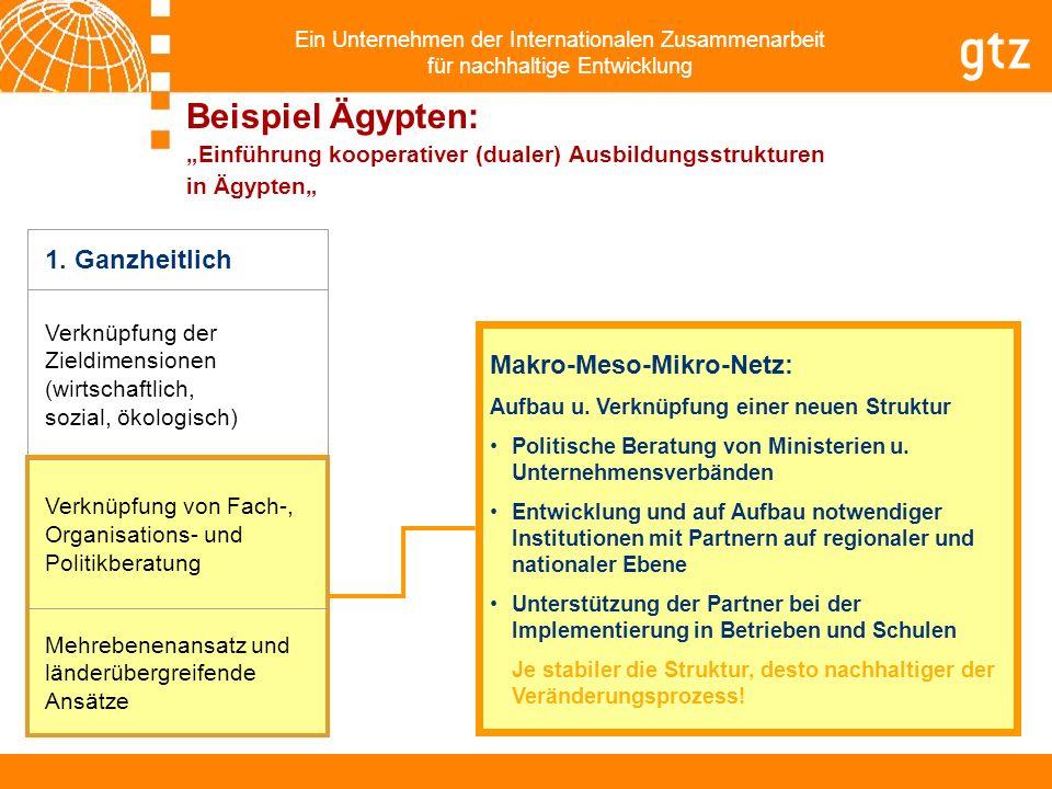 Ein Unternehmen der Internationalen Zusammenarbeit für nachhaltige Entwicklung Makro-Meso-Mikro-Netz: Aufbau u. Verknüpfung einer neuen Struktur Polit