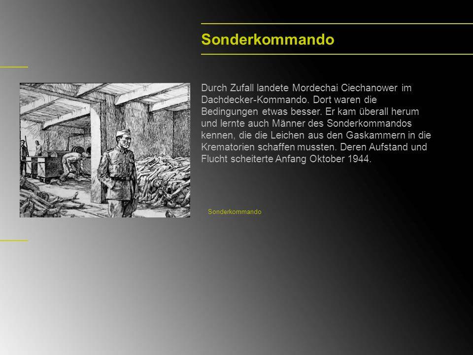 Sonderkommando Durch Zufall landete Mordechai Ciechanower im Dachdecker-Kommando. Dort waren die Bedingungen etwas besser. Er kam überall herum und le