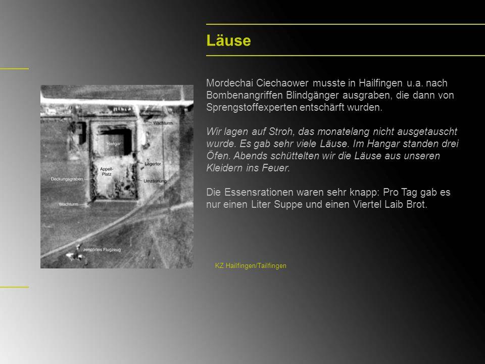 Läuse Mordechai Ciechaower musste in Hailfingen u.a. nach Bombenangriffen Blindgänger ausgraben, die dann von Sprengstoffexperten entschärft wurden. W