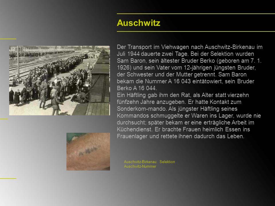 Auschwitz Der Transport im Viehwagen nach Auschwitz-Birkenau im Juli 1944 dauerte zwei Tage. Bei der Selektion wurden Sam Baron, sein ältester Bruder
