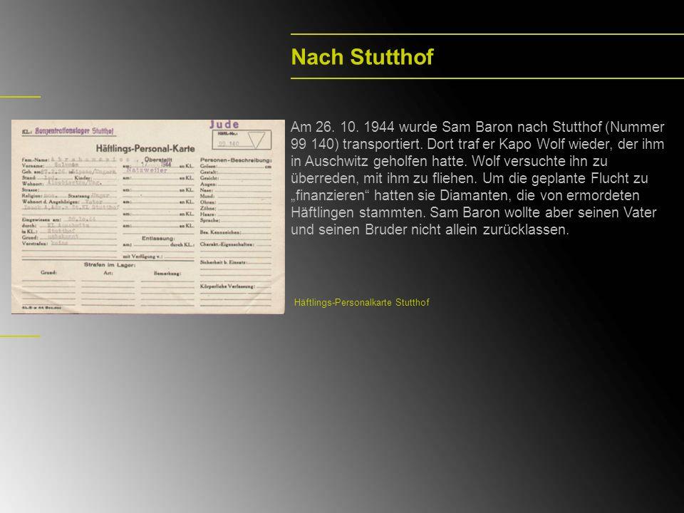 Nach Stutthof Am 26. 10. 1944 wurde Sam Baron nach Stutthof (Nummer 99 140) transportiert. Dort traf er Kapo Wolf wieder, der ihm in Auschwitz geholfe