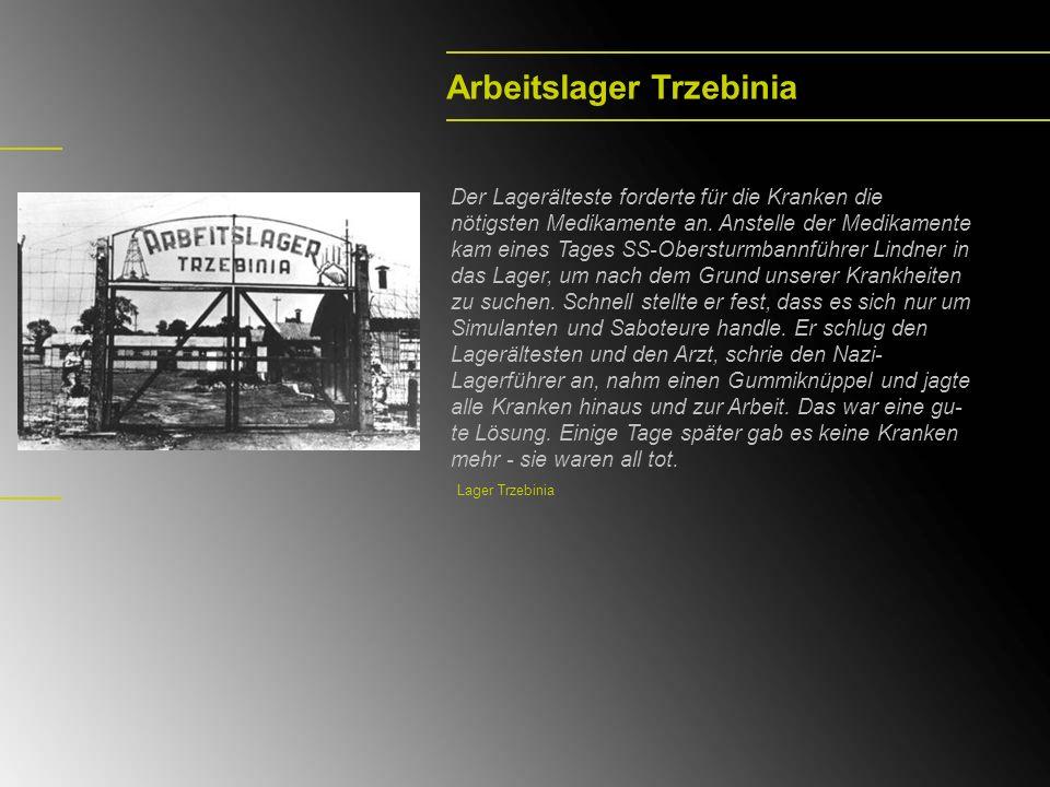 Arbeitslager Trzebinia Der Lagerälteste forderte für die Kranken die nötigsten Medikamente an. Anstelle der Medikamente kam eines Tages SS-Obersturmba