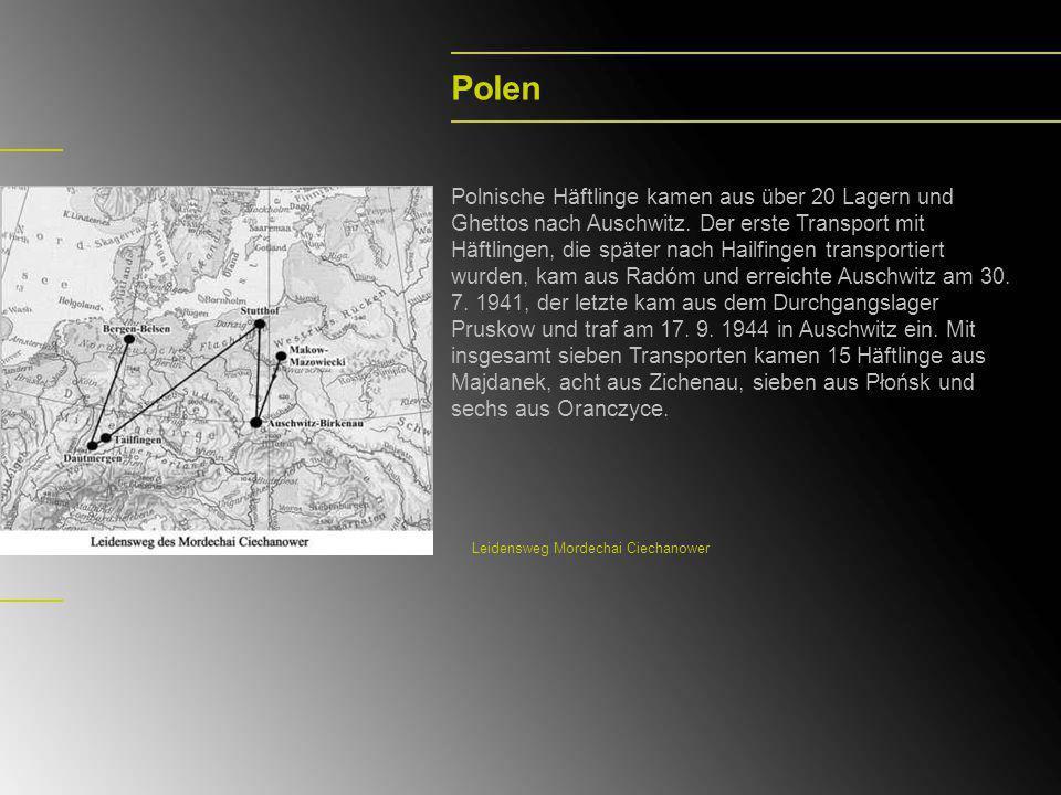 Polen Polnische Häftlinge kamen aus über 20 Lagern und Ghettos nach Auschwitz. Der erste Transport mit Häftlingen, die später nach Hailfingen transpor