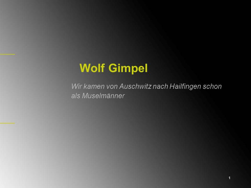 Wolf Gimpel Wir kamen von Auschwitz nach Hailfingen schon als Muselmänner 1
