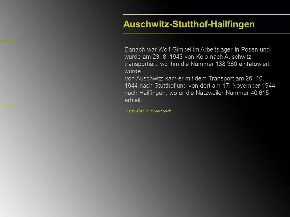 Auschwitz-Stutthof-Hailfingen Danach war Wolf Gimpel im Arbeitslager in Posen und wurde am 23. 8. 1943 von Kolo nach Auschwitz transportiert, wo ihm d