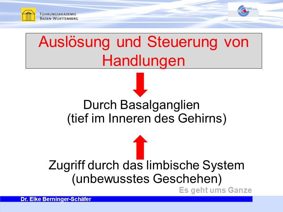 Dr. Elke Berninger-Schäfer Es geht ums Ganze Auslösung und Steuerung von Handlungen Durch Basalganglien (tief im Inneren des Gehirns) Zugriff durch da