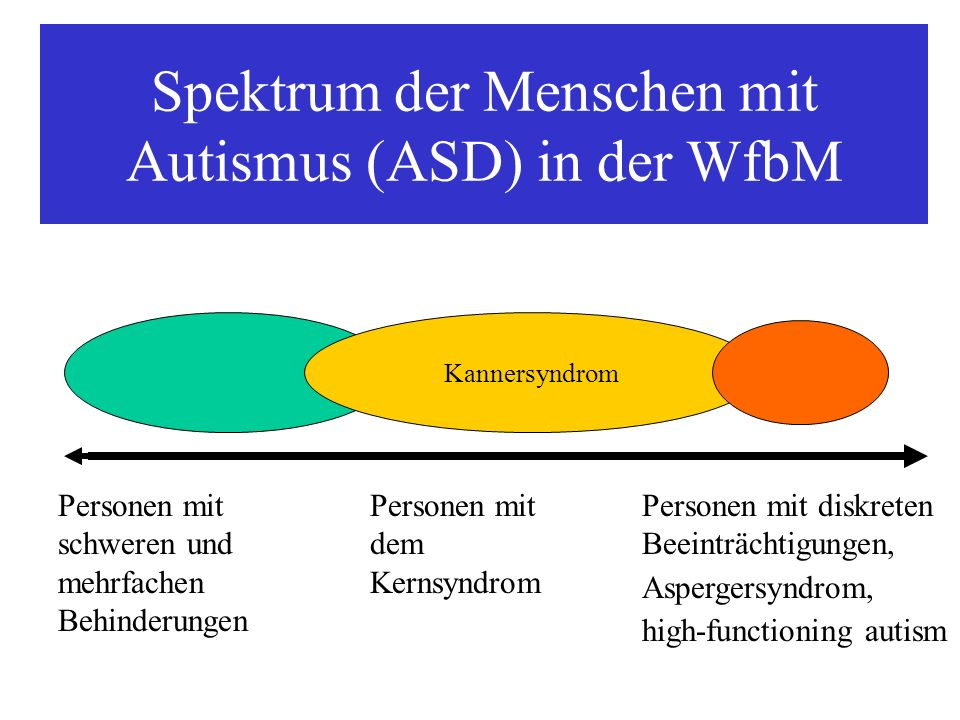 Spektrum der Menschen mit Autismus (ASD) in der WfbM Personen mit schweren und mehrfachen Behinderungen Personen mit dem Kernsyndrom Personen mit disk