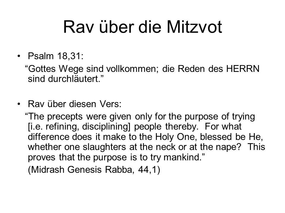 Rav über die Mitzvot Psalm 18,31: Gottes Wege sind vollkommen; die Reden des HERRN sind durchläutert. Rav über diesen Vers: The precepts were given on