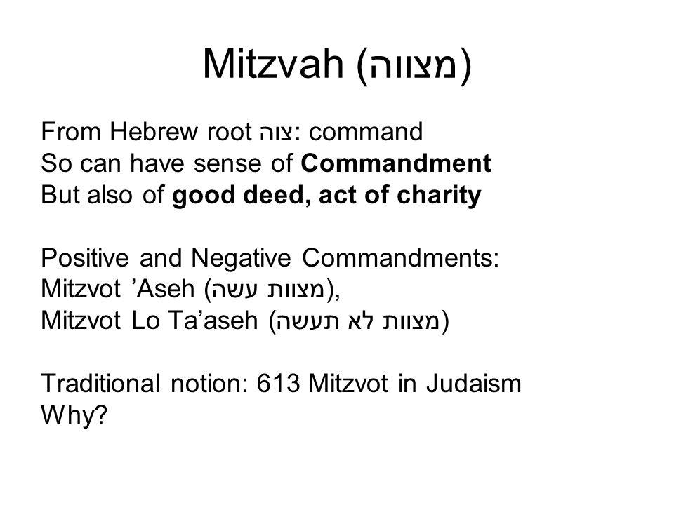bMakkot 23b-24a:darum hat er ihnen viel Tora und Gebote gegeben R.