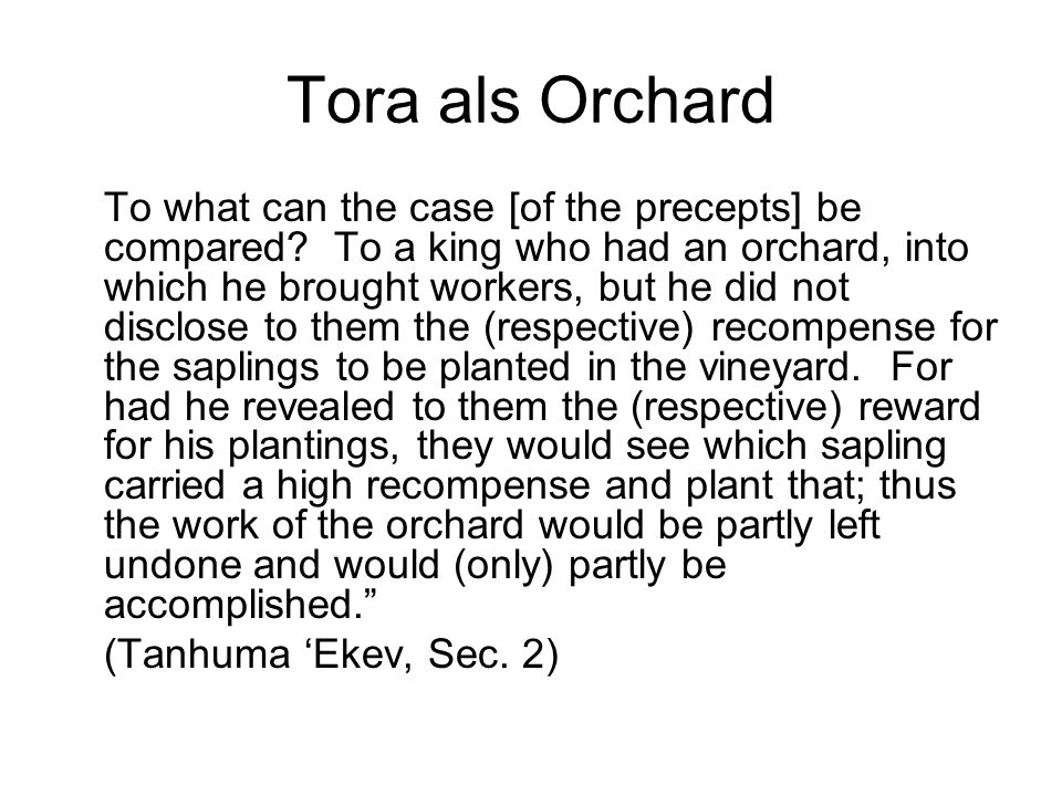 Tora als Orchard To what can the case [of the precepts] be compared.