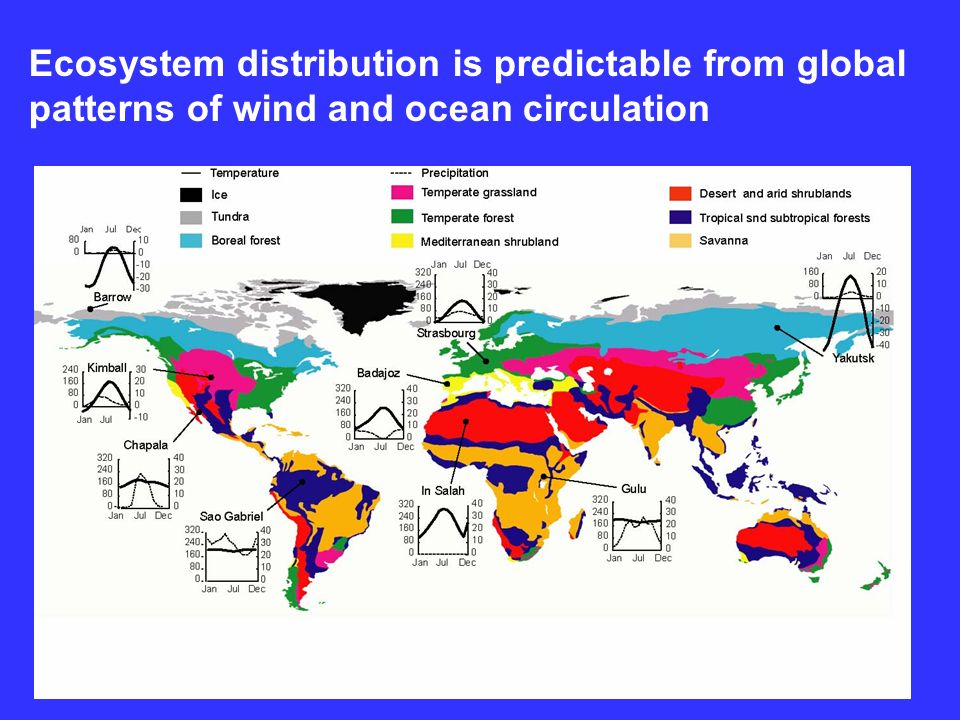 Ecosystem distribution is predictable from global patterns of wind and ocean circulation