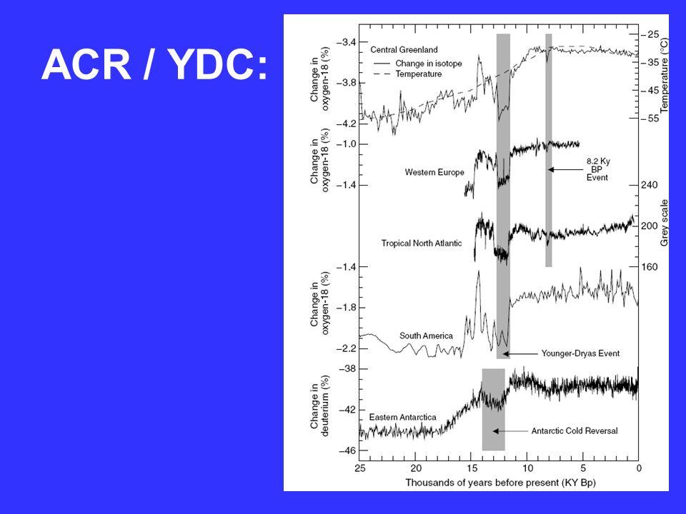 ACR / YDC: