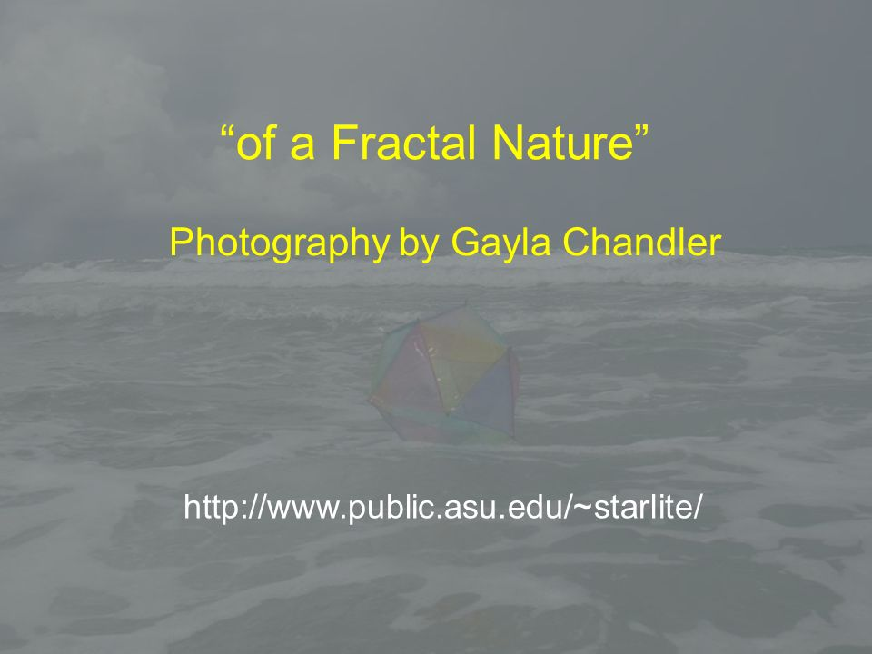 Photography by Gayla Chandler of a Fractal Nature http://www.public.asu.edu/~starlite/