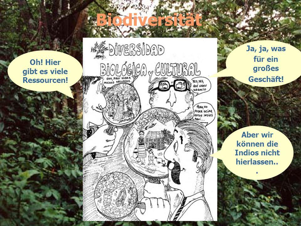 Biodiversität Oh! Hier gibt es viele Ressourcen! Ja, ja, was für ein großes Geschäft! Aber wir können die Indios nicht hierlassen...