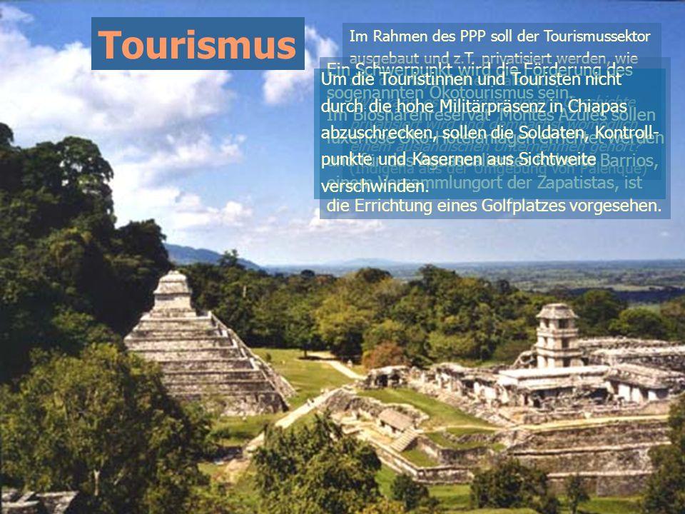 Tourismus Im Rahmen des PPP soll der Tourismussektor ausgebaut und z.T. privatisiert werden, wie z.B. die Maya-Ruinen Palenque. Wie kann es sein, dass