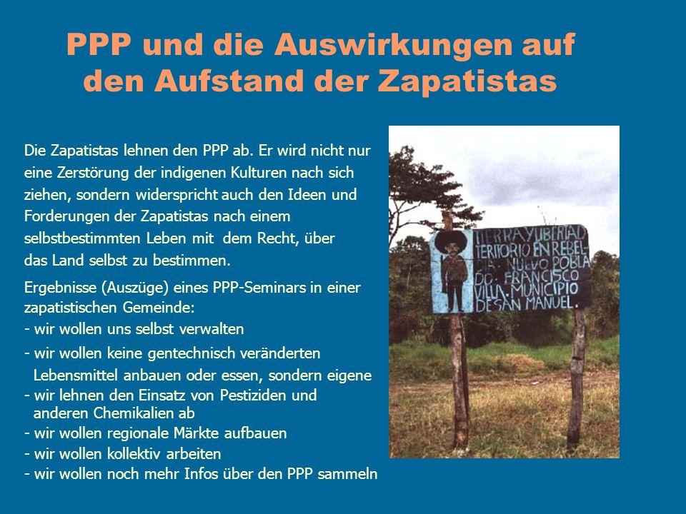 PPP und die Auswirkungen auf den Aufstand der Zapatistas Die Zapatistas lehnen den PPP ab. Er wird nicht nur eine Zerstörung der indigenen Kulturen na