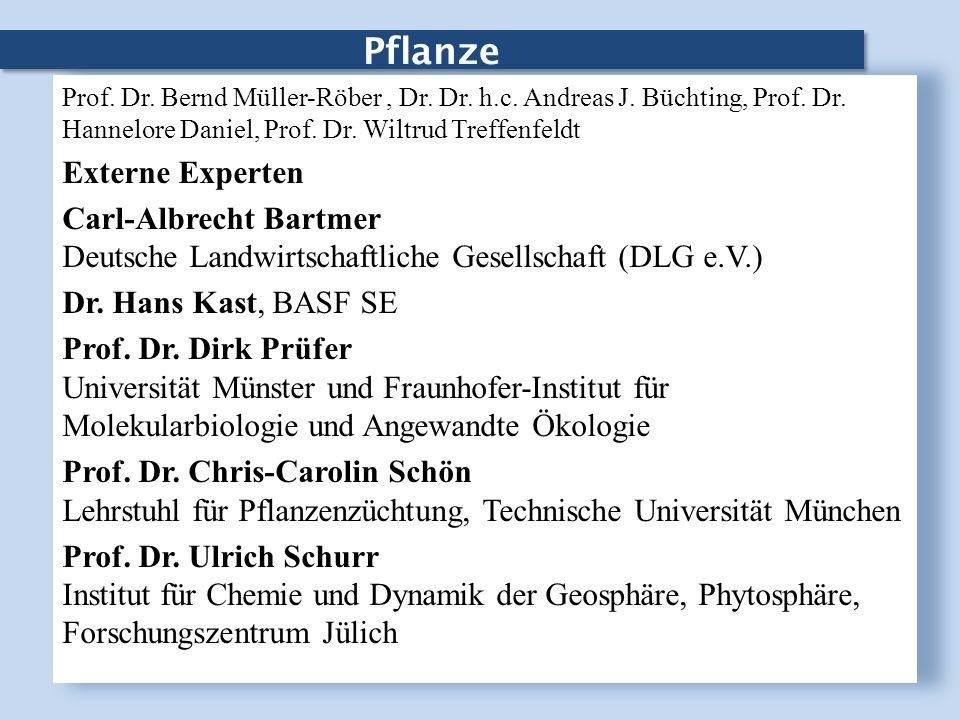 Pflanze Prof. Dr. Bernd Müller-Röber, Dr. Dr. h.c. Andreas J. Büchting, Prof. Dr. Hannelore Daniel, Prof. Dr. Wiltrud Treffenfeldt Externe Experten Ca