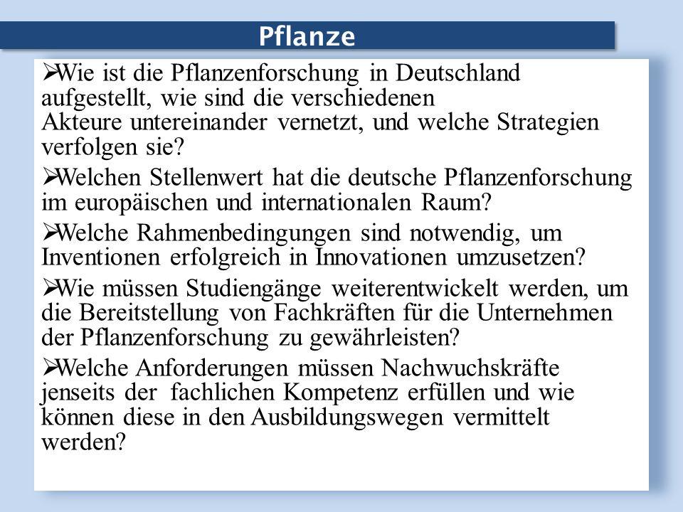 Pflanze Wie ist die Pflanzenforschung in Deutschland aufgestellt, wie sind die verschiedenen Akteure untereinander vernetzt, und welche Strategien ver