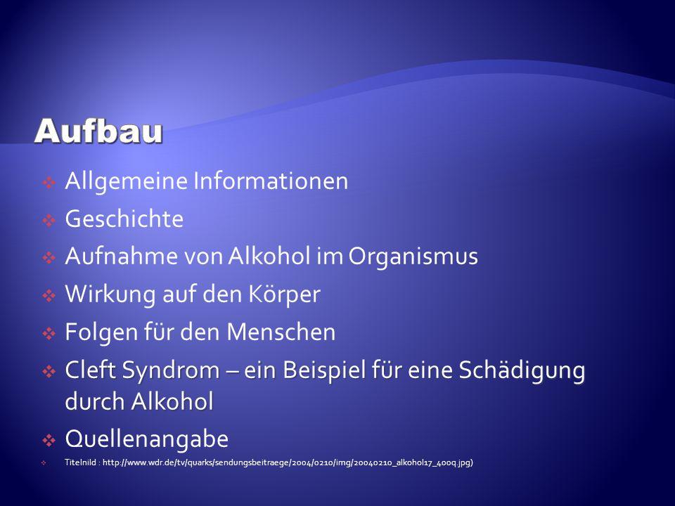 Allgemeine Informationen Geschichte Aufnahme von Alkohol im Organismus Wirkung auf den Körper Folgen für den Menschen Cleft Syndrom – ein Beispiel für