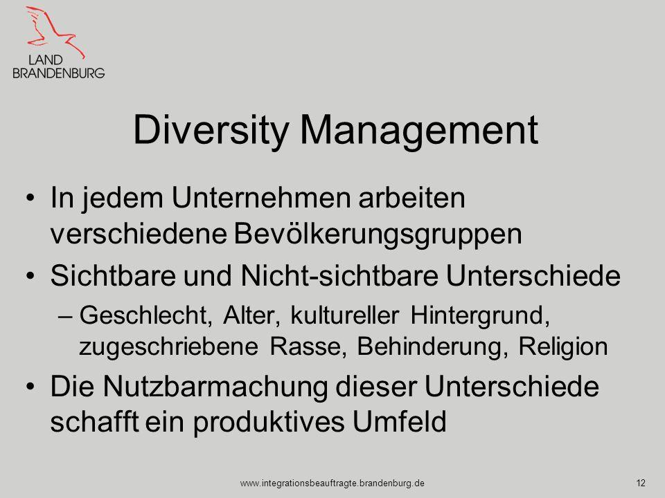 www.integrationsbeauftragte.brandenburg.de12 Diversity Management In jedem Unternehmen arbeiten verschiedene Bevölkerungsgruppen Sichtbare und Nicht-s