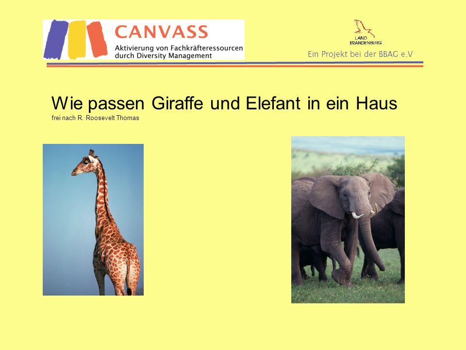 Ein Projekt bei der BBAG e.V Wie passen Giraffe und Elefant in ein Haus frei nach R. Roosevelt Thomas