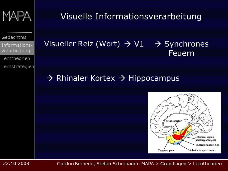 Gordon Bernedo, Stefan Scherbaum: MAPA > Grundlagen > Lerntheorien Gedächtnis Informations- verarbeitung Lerntheorien Lernstrategien 22.10.2003 Visuel